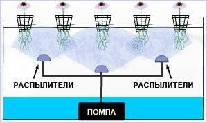 Гидропонная система