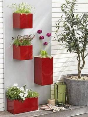 Красивые цветы для квартиры