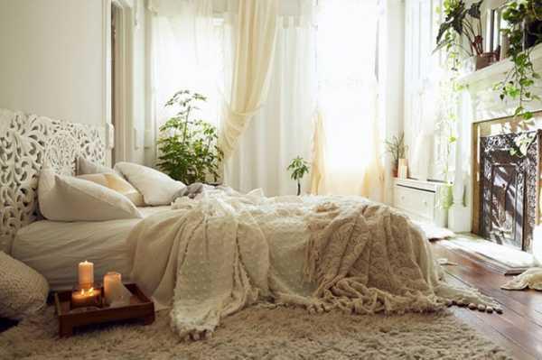 Можно ли в спальне ставить фикус