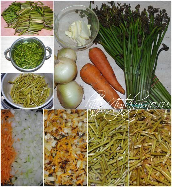 Блюда из папоротника рецепты