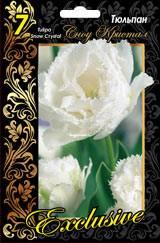 Тюльпан сноу кристал