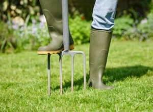 Когда сеять газонную траву на даче