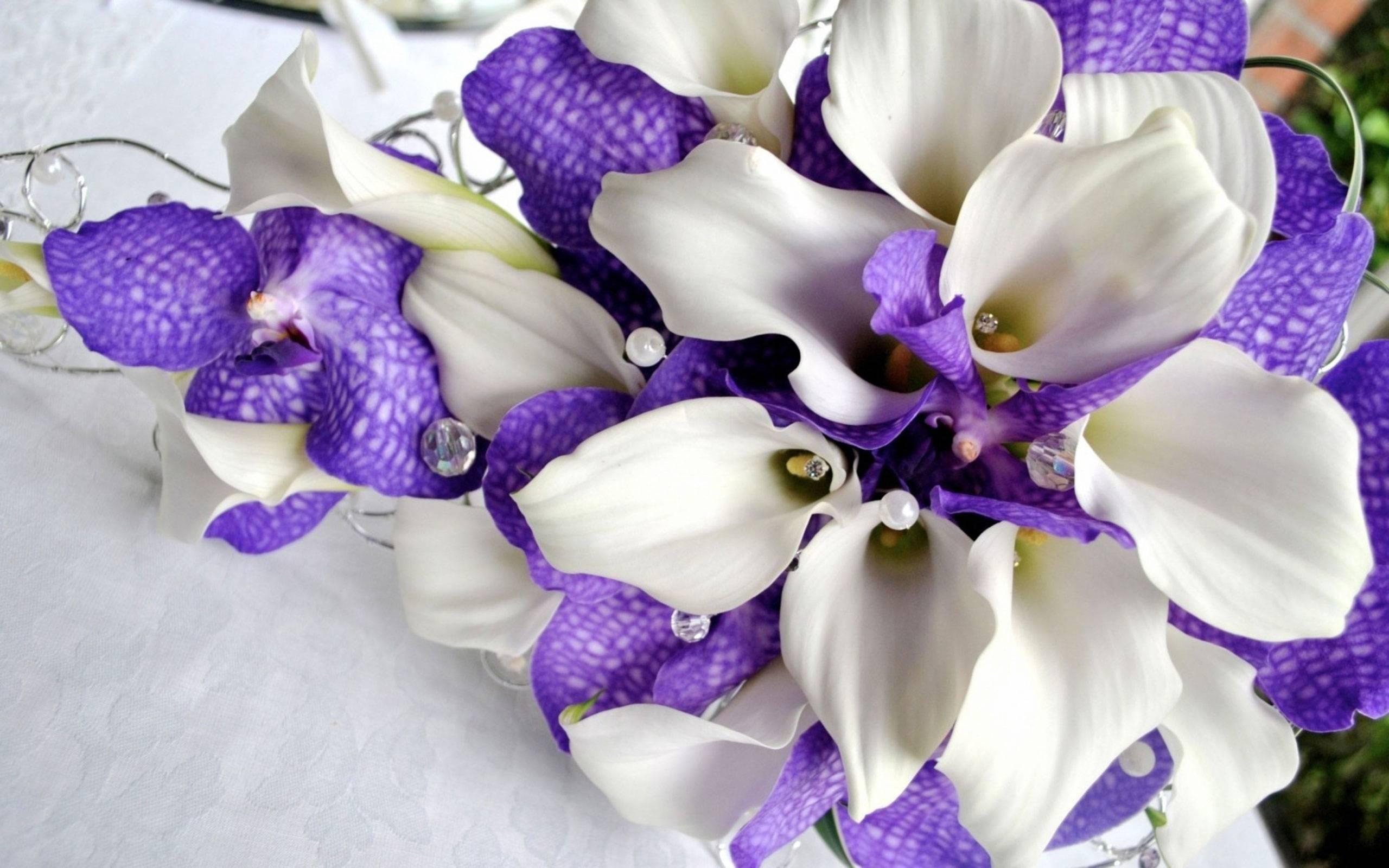 букет для невесты из орхидей