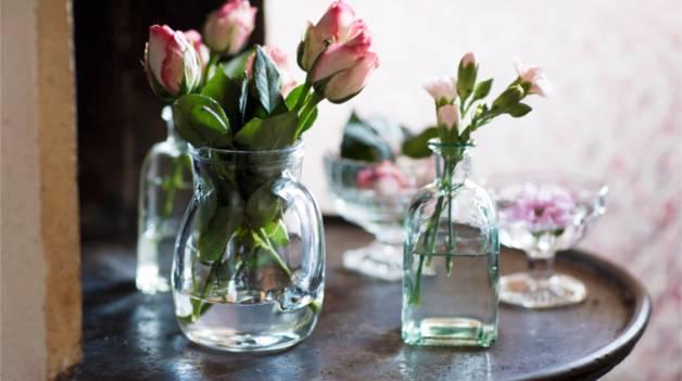 Как реанимировать розы