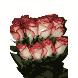 Значение роз