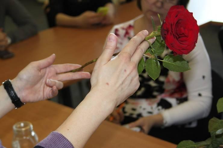 Как посадить розу из черенка