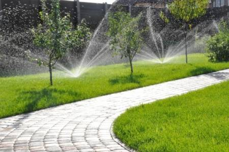Как засеять газонную траву на даче