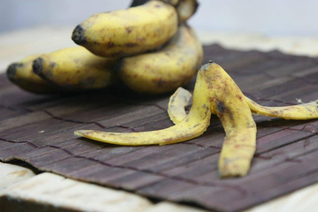Настой из банановой кожуры как удобрение