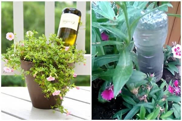 Система полива для комнатных растений
