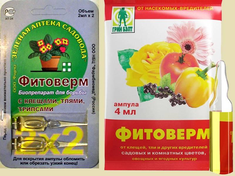 Можно ли фитовермом поливать комнатные цветы? 29