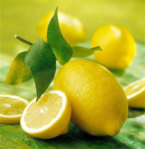 Лимон как вырастить