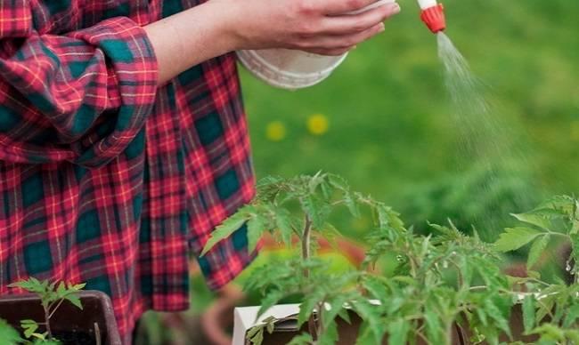 Перекись водорода для сада