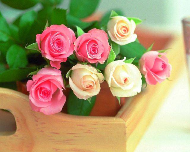 Белые розы букет