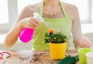 Инсектициды для комнатных растений