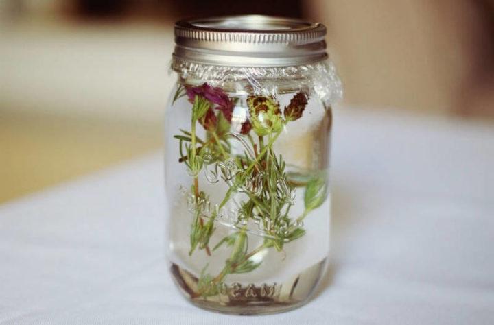 Лапчатка кустарниковая сорта