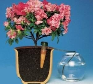 Система автоматического полива Blumat